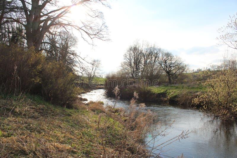Riverbank scène op een zonnige middag in Schotland stock foto