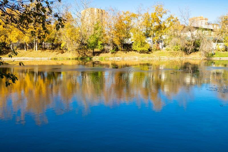 riverbank in stedelijk park in zonnige de herfstdag stock afbeeldingen