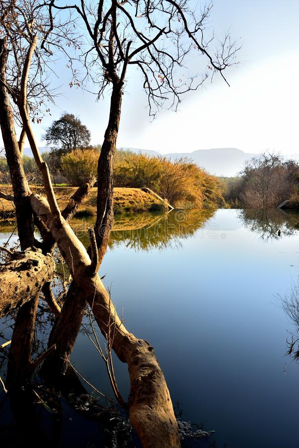 Riverbank 1. Tranquil river surface above weir on farm near Skeerpoort South Africa royalty free stock photography
