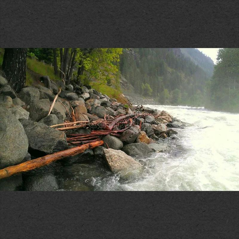 riverbed στοκ φωτογραφία