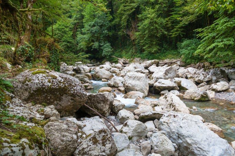 riverbed στοκ εικόνα με δικαίωμα ελεύθερης χρήσης