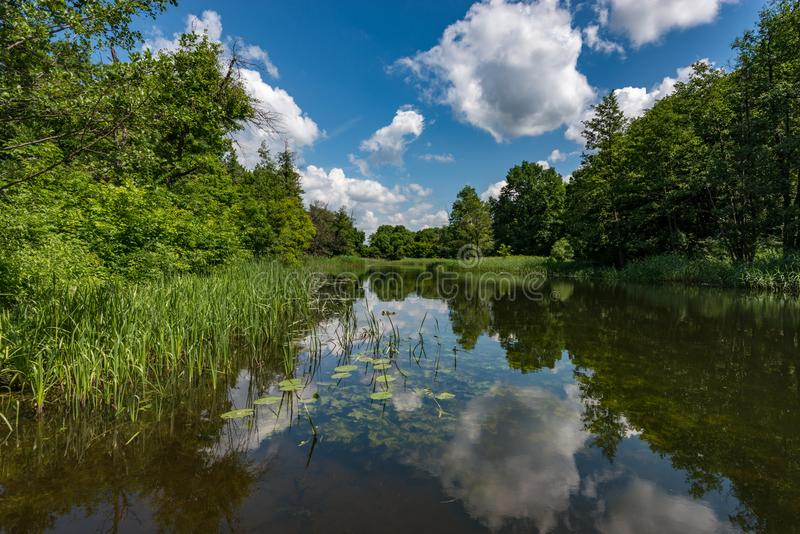 The riverbed of a small river, running water, the sun and silence - a fisherman`s dream royalty free stock photography