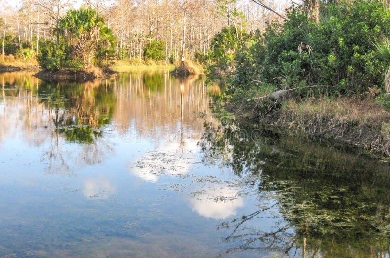 Riverbend parkerar i Jupiter, Florida royaltyfri fotografi