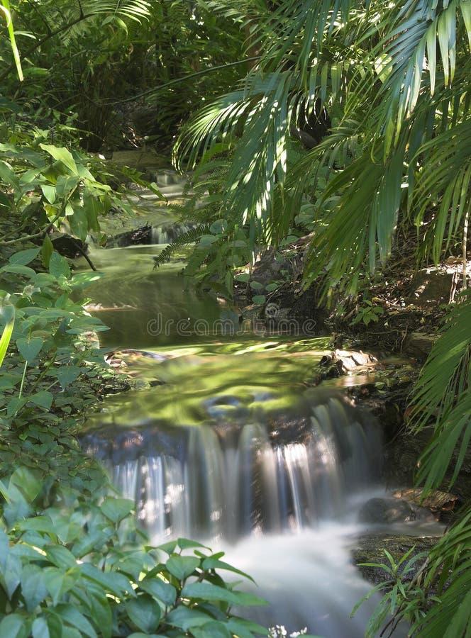 Riverfalls Стоковые Изображения