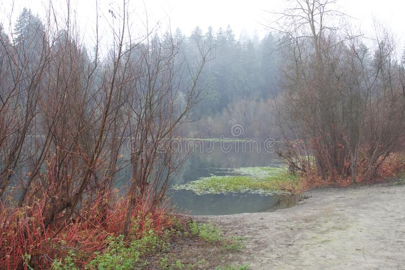 Riverfront Regional Park - is just minutes west of Windsor and surrounded by classic Wine Country scenery. Winter. royalty free stock photo