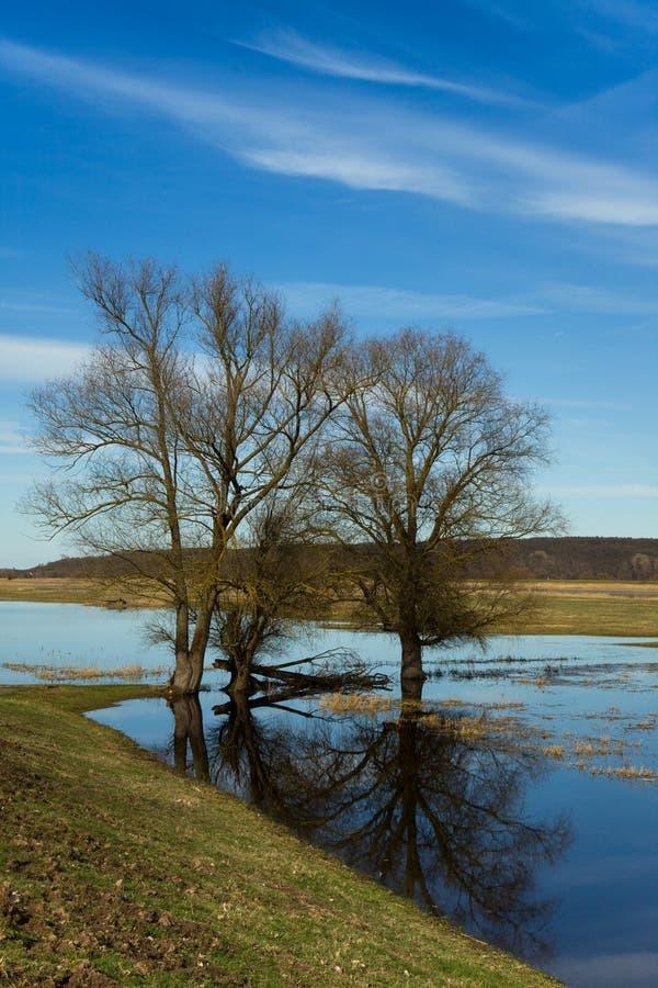 Riverscape με την πλημμύρα στοκ εικόνες