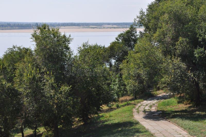 Riverscape con los árboles y la trayectoria pavimentada fotografía de archivo libre de regalías