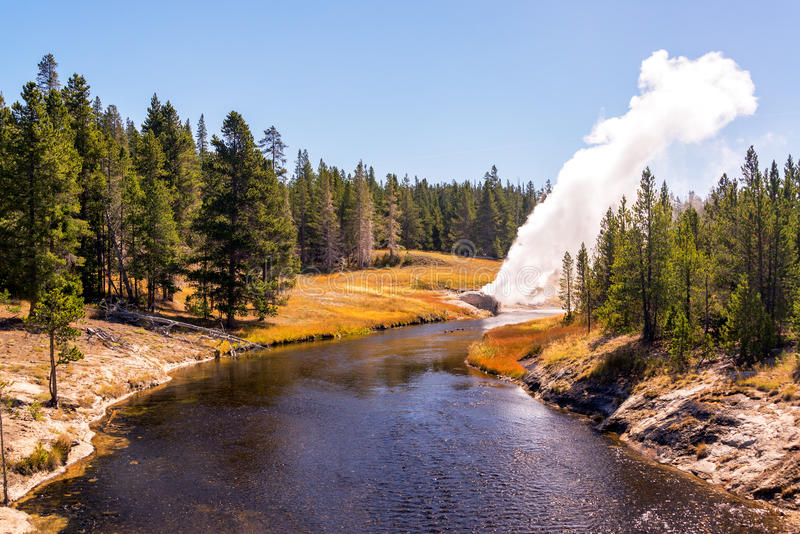 Riverside Geyser Eruption. View of the Riverside Geyser erupting over the Firehole River in Yellowstone National Park stock images