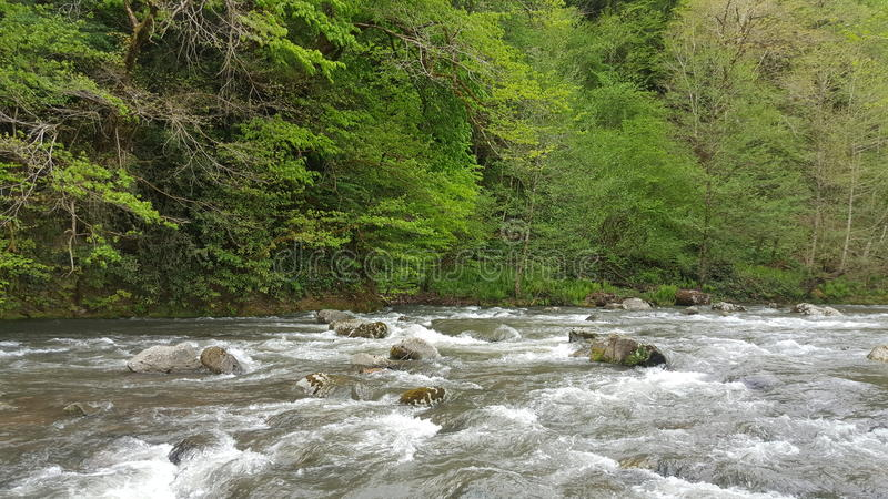 Riverstream photos libres de droits