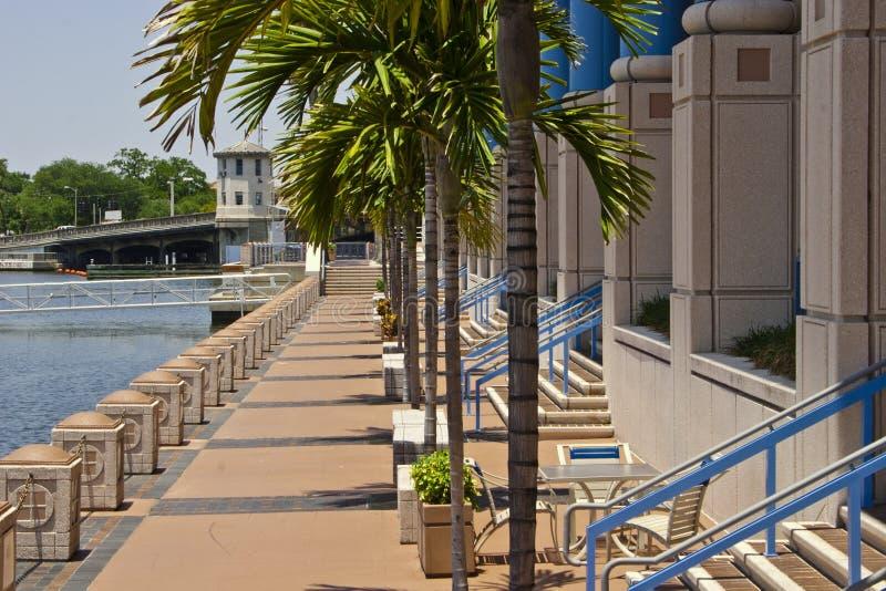 Riverwalk, centro di convenzione di Tampa fotografia stock