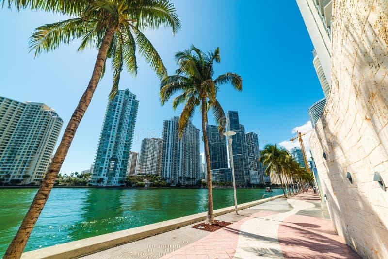 Riverwalk in im Stadtzentrum gelegenem Miami lizenzfreie stockfotografie