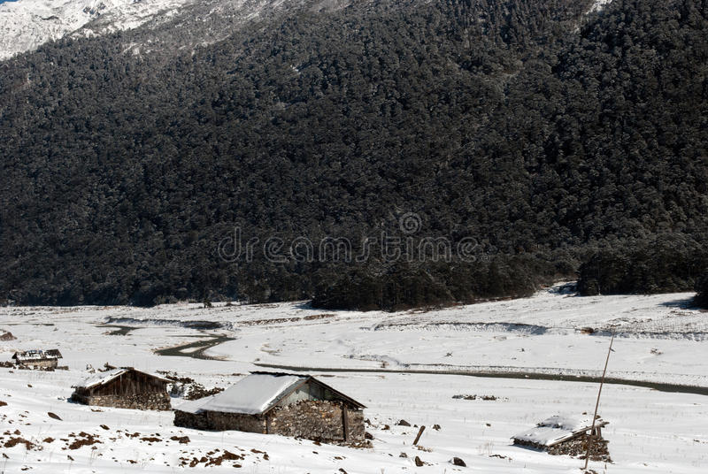 Download Rivière à La Vallée De Yumthang Photographie éditorial - Image du snowfall, hiver: 56476192
