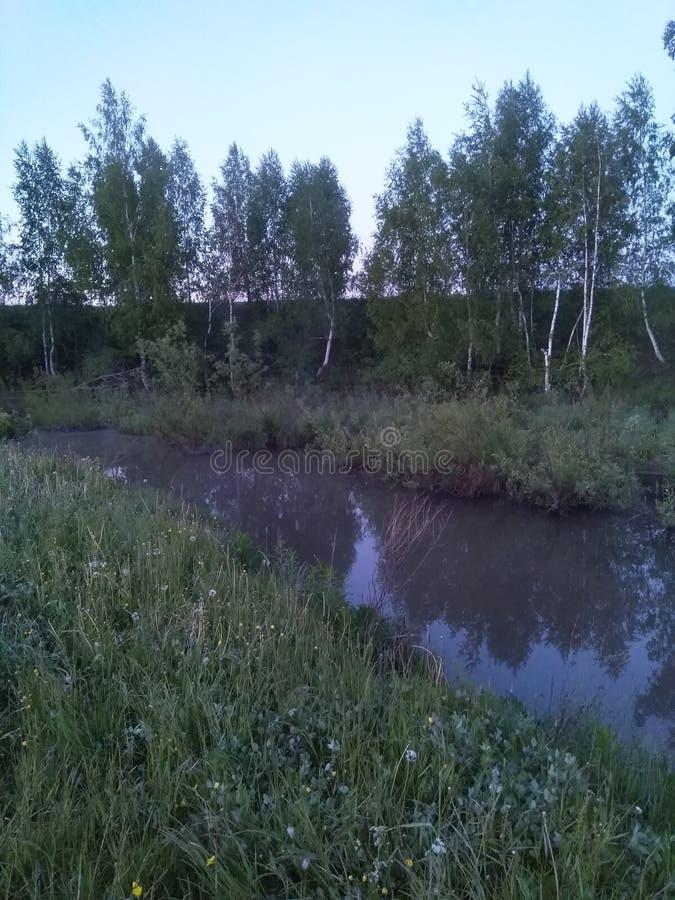 Rivière photo libre de droits