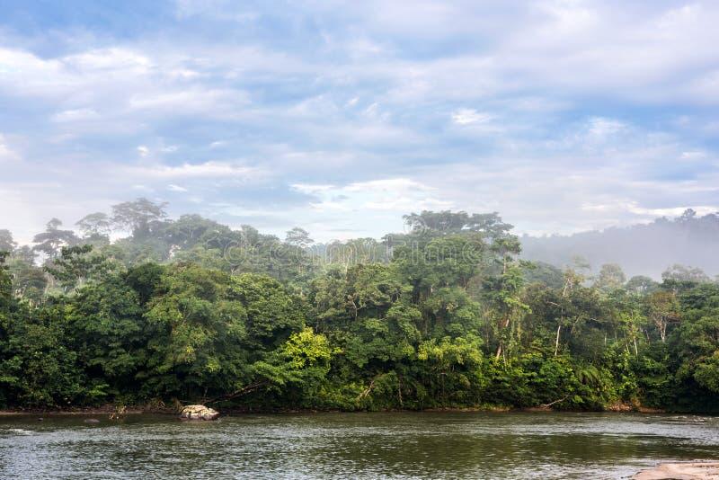 Rivière amazonienne de Misahualli de forêt tropicale l'equateur photos stock