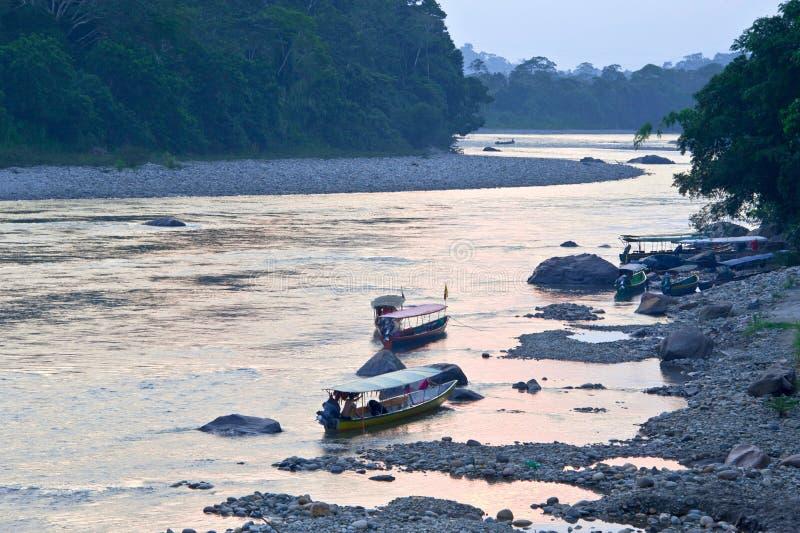 Rivière amazonienne de Napo, Equateur photos stock