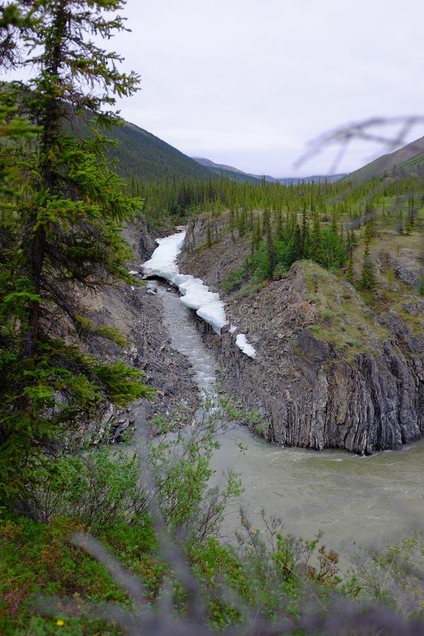 Rivière arctique photo libre de droits