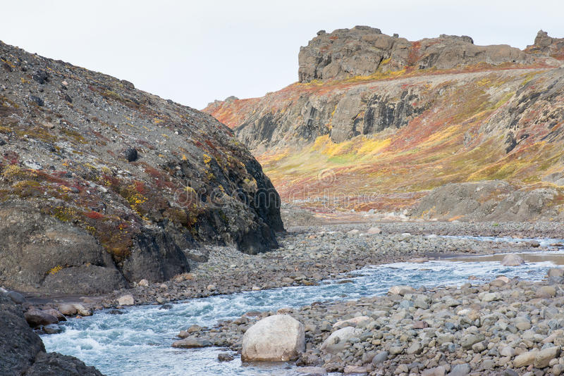 Rivière arctique en été photo stock