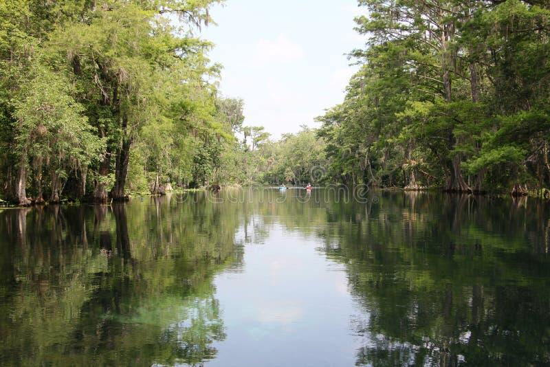 Rivière argentée la Floride image libre de droits