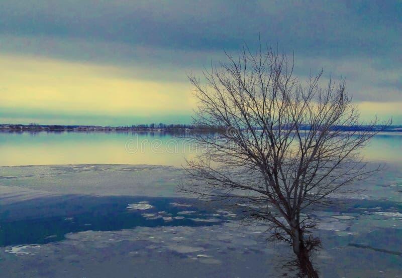 Rivi?re avec de la glace en premier ressort photo stock