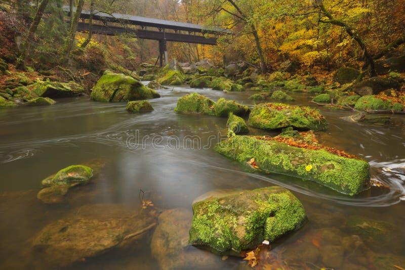 Rivière avec un pont couvert dans une forêt en automne photo stock