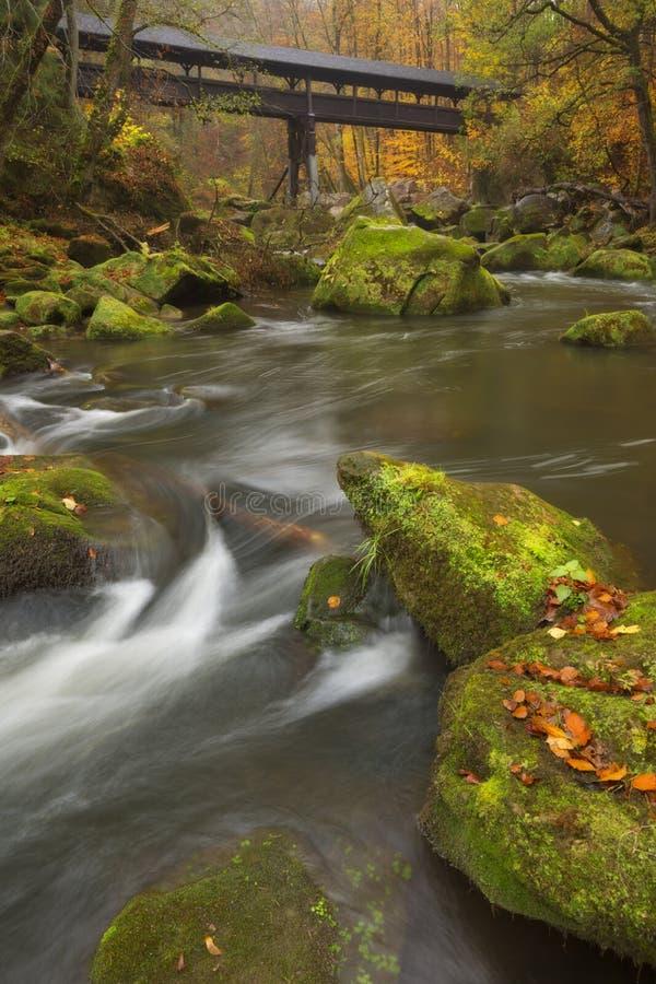 Rivière avec un pont couvert dans une forêt en automne photographie stock libre de droits
