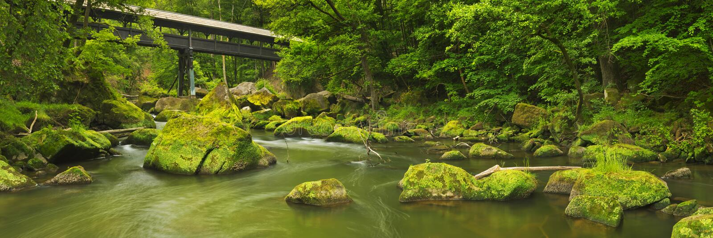 Rivière avec un pont couvert dans une forêt verte luxuriante photographie stock libre de droits