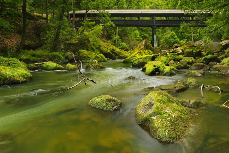 Rivière avec un pont couvert dans une forêt verte luxuriante photos stock