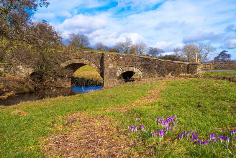 Rivière Bain North Yorkshire photographie stock libre de droits