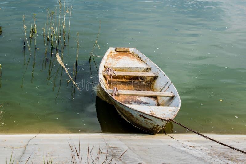 Rivière boueuse verdâtre de vieux bateau en bois À côté du vieil aviron en bois Paysage local et rural photos stock