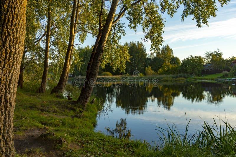 Rivière calme avec des réflexions des arbres environnants image libre de droits