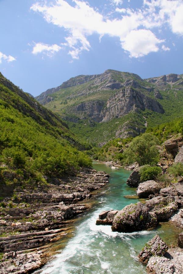 Rivière Cijevna de canyon photo libre de droits