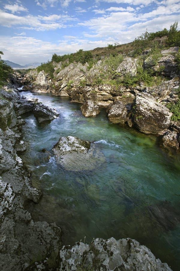Rivière Cijevna, Monténégro images libres de droits