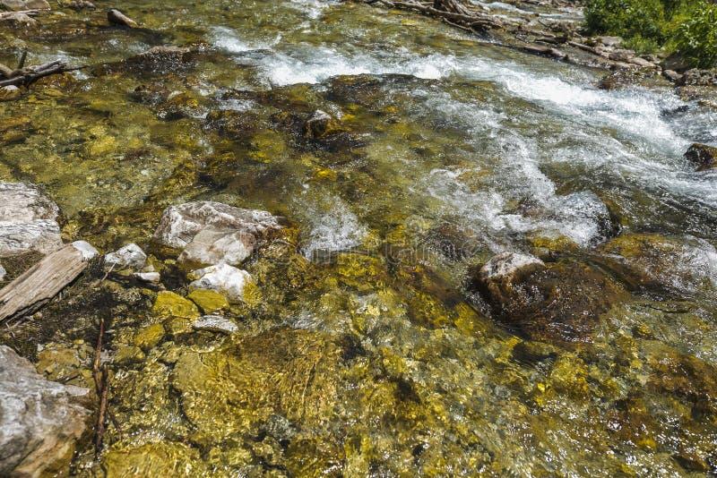 Rivière claire et rapide de montagne images libres de droits