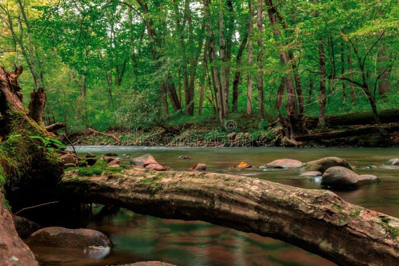 Rivière courante en Caroline du Nord images libres de droits
