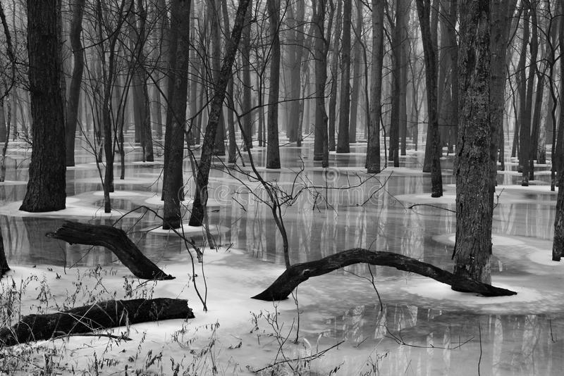 Rivière dégelant en hiver en retard photos stock
