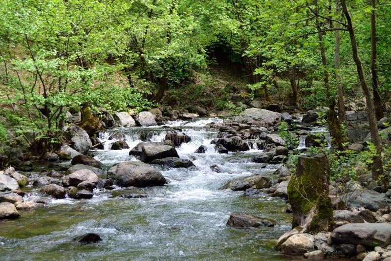 Rivière d'Erikli Yaylası photo stock