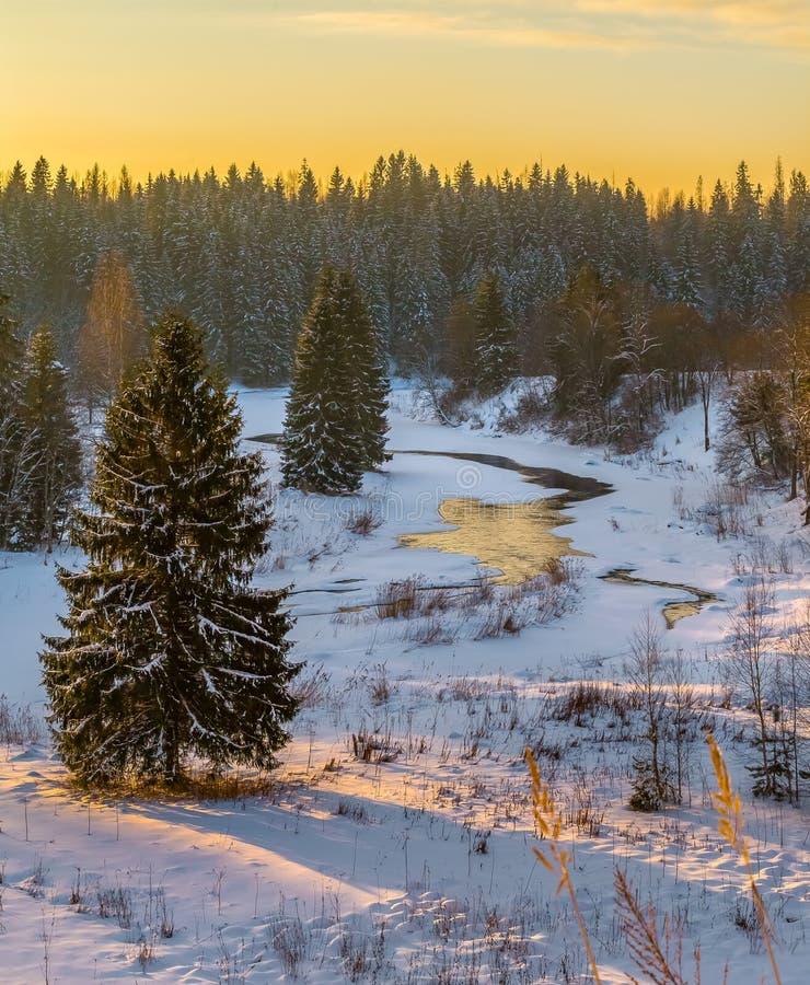 Rivière d'hiver Bon esprit de nouvelle année photo libre de droits