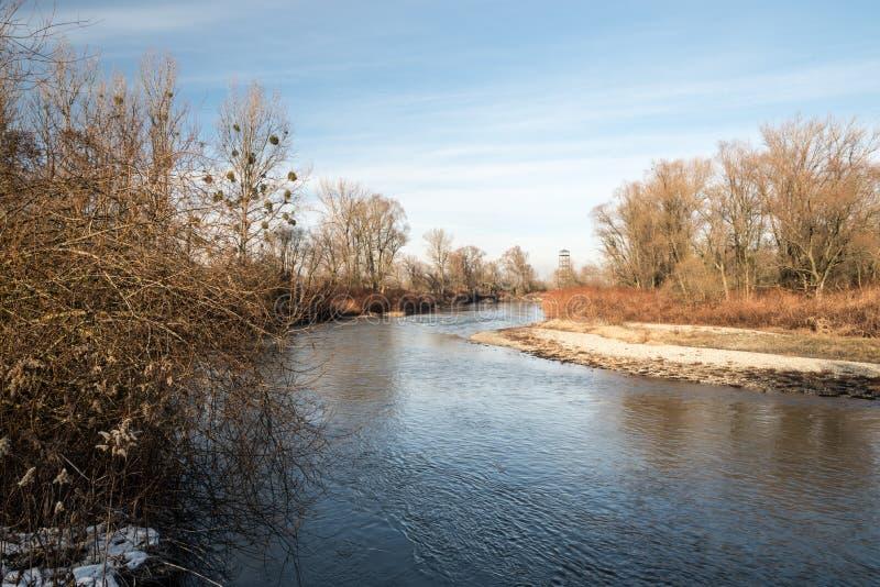 Rivière d'Odra avec la tour de vue sur le fond de tha aux frontières de tchèque-poli près des villes de Bohumin et de Chalupki photos stock