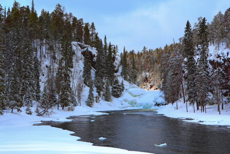 Réservation de faune d'Oulanka en Finlande. image stock