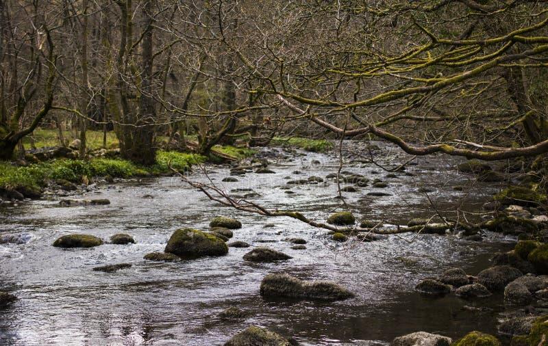 Rivière dans Grasmere photographie stock libre de droits