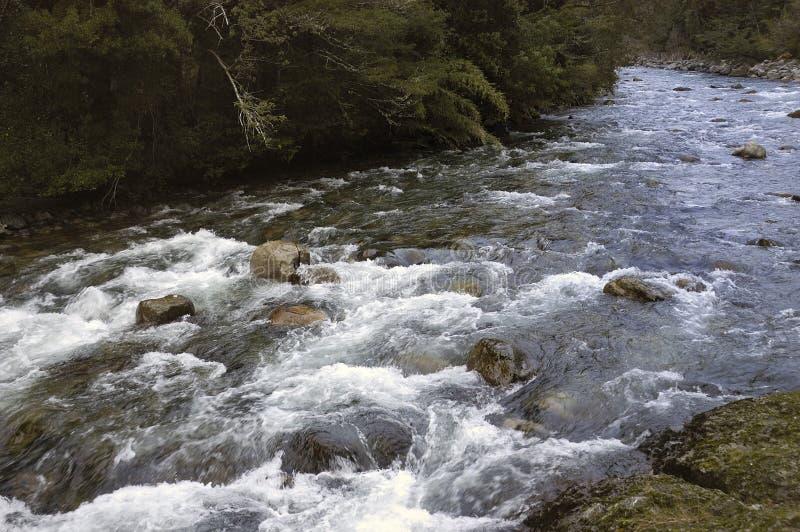 Rivière dans les montagnes photographie stock libre de droits