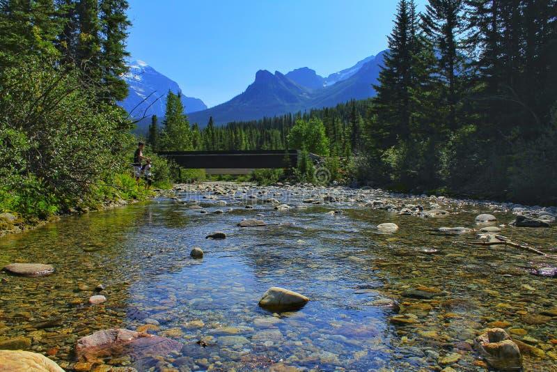 Rivière dans les montagnes Banff Canada image libre de droits