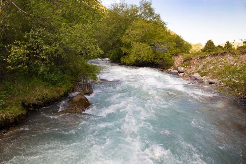 Rivière dans les montagnes de Tian Shan au printemps image libre de droits