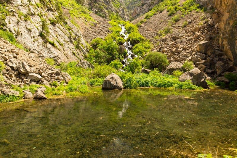 Rivière dans les montagnes de Tian Shan au printemps photos libres de droits