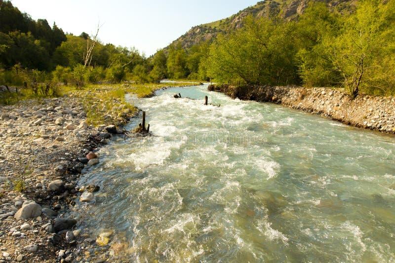 Rivière dans les montagnes de Tian Shan au printemps photographie stock