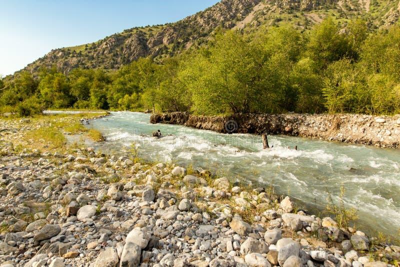 Rivière dans les montagnes de Tian Shan au printemps photo stock