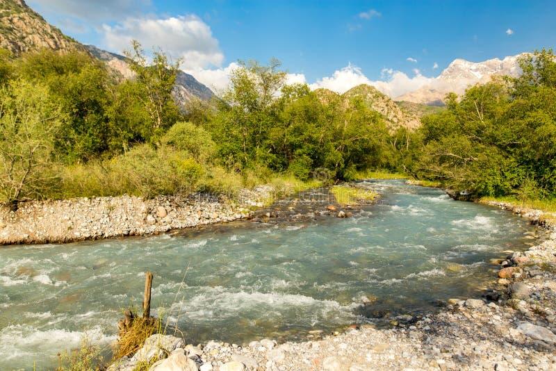 Rivière dans les montagnes de Tian Shan au printemps images stock