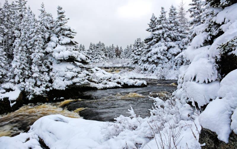 Rivière de Canada de neige d'hiver photos libres de droits