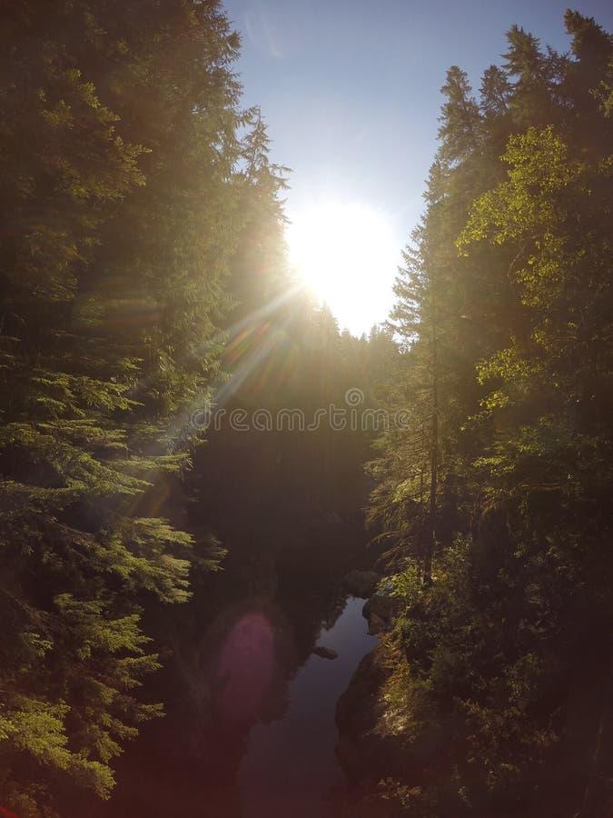 Rivière de Capilano, Vancouver VC, Canada image libre de droits