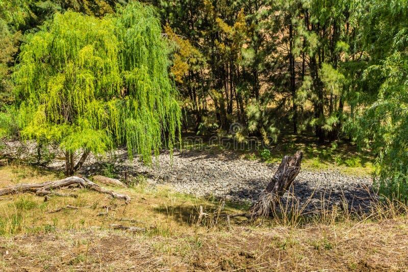 Rivière de chasseur, chasseur supérieur, NSW, Australie image libre de droits